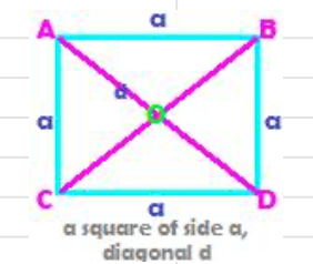 the perimeter and area of a square