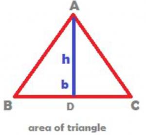image of area of triangle